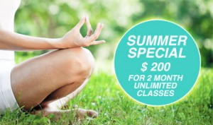 summer special small